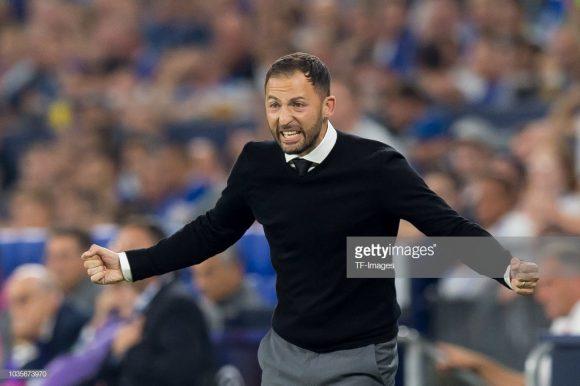 Por incrível que pareça, o treinador Domenico Tedesco está balançando no cargo, e corre sério riscos de perder o emprego logo neste início de temporada.
